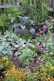 Mischungsgemüse und Blumengartenbett Stockbild