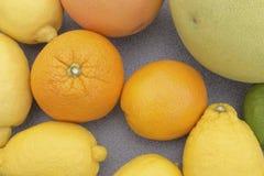 Mischzitrusfrucht Stockbild