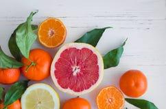 Mischzitrusfruchthintergrund Lizenzfreie Stockbilder