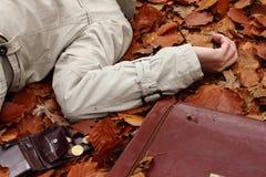 Misdaad in het hout. Stock Afbeeldingen