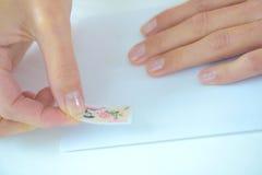 Mise d'un timbre image libre de droits