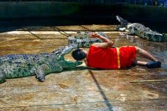 Mise d'une tête dans les mâchoires du `s de crocodile Photo libre de droits