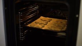 Mise du plateau de cuisson avec les biscuits crus en four électrique clips vidéos