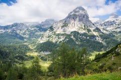 Miselj peak and mountain pastures from Velo field polje., Juli. An alps Stock Photo