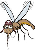 Miserable mosquito Stock Image