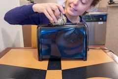 Misguided woman attempts to stuff a large blueberry scone into a small toaster slot, meant for bread.  royalty free stock photography