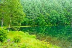 Mishaka Pond Royalty Free Stock Photography
