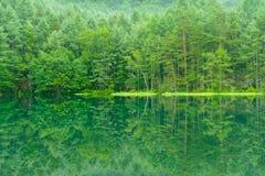 Mishaka Pond Stock Image