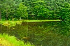 Mishaka Pond royalty free stock photo