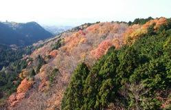 MISHIMA SKYWALK, JAPAN Stock Image
