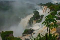 Misiones, Iguazu-Daling, Argentini?: Iguazudalingen van de kant van Argentini? Ongelooflijk nationaal park met grote watervallen  stock fotografie