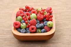 miska owoców jagód Zdjęcia Stock