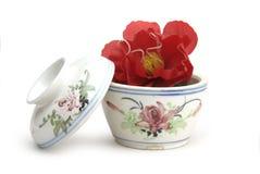 miska porcelana Fotografia Stock