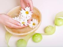 miska rąk kobiecej pełnej wody Obraz Royalty Free
