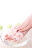 miska rąk kobiecej pełnej wody Zdjęcie Royalty Free