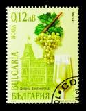 Misket - Evsinograd-Kasteel, Wijnen en Wijnbouwgebieden serie Stock Foto