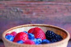 miski lasów owoców fotografia royalty free