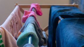 Mismatched, pair of ankle socks drying on a laundry rack with woman`s clothes including blue jeans and pink eyelet sweater, royalty free stock photo