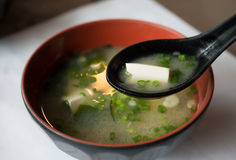 Miso soup. Japanese food in the cup stock images