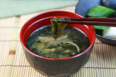 Miso soup of the rock laver Royalty Free Stock Photography
