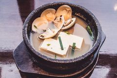 Miso Soup with tofu and shell, Japanese food. Cooking in Japanese Style. Japanese Cuisine Royalty Free Stock Image