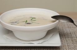 Miso soup in white dish Royalty Free Stock Image