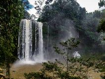 Misol brzęczeń siklawa - Chiapas, Meksyk obrazy stock