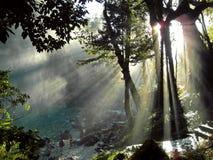 Misol Ha, Чьяпас, Мексика Стоковое Фото