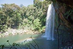 Misol-ha cascada, Chiapas, México fotografía de archivo