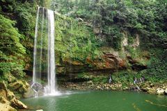 Misol-ha cascade, Chiapas, Mexique Photo stock