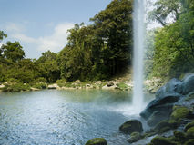 Misol Ha vattenfall i Chiapas Royaltyfria Foton