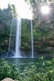 Misol Ha waterfall on Chiapas Royalty Free Stock Images