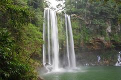 Misol Ha waterfall Stock Images