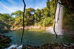 Misol-Ha Waterfall, Mexico - November 24, 2010. Waterfall in sunset. Yucatan peninsula, Chiapas royalty free stock images