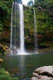 Misol-Ha waterfall near Palenque, Chiapas, Mexico Royalty Free Stock Photo