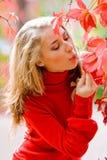 Miss autumn Royalty Free Stock Photos