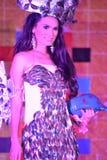 Miss Daliao 2014 Royalty Free Stock Image