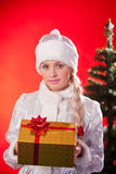 Miss santa claus with christmas present Royalty Free Stock Photography