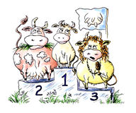 Miss a super-udder. Comic water colour drawing: competition of beauty among cows vector illustration