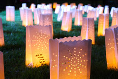 Miss you. A group of glowing candle bags on the grass at night Stock Photography