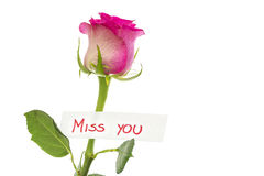 Miss you message Royalty Free Stock Photos
