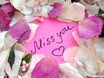 Miss you message on pink sticky note with dry rose and orchid flower petals and jewelry ring and chain on wooden background stock images