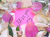Miss you message on pink sticky note with dry rose and orchid flower petals and silver jewelry ring and chain on wooden back royalty free stock photos