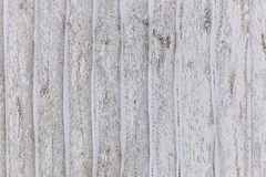 Missed first trimester wooden fence Stock Photos