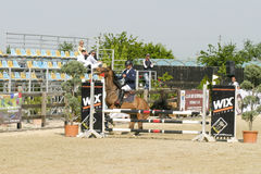 Missed horse jump Royalty Free Stock Photography