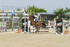 Missed horse jump Stock Photo