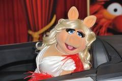 Misser Piggy, Stock Afbeeldingen