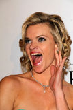 Missi Pyle. At the Weinstein Company Post Oscar Event, Skybar, West Hollywood, CA 02-26-12 Royalty Free Stock Photos