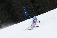 MISSILLIER Steve FRA). Alta Badia, ITALY 22 MISSILLIER Steve FRA) competing in the Audi FIS Alpine Skiing World Cup MEN'S GIANT SLALOM Stock Photos