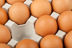 Missing chicken egg Royalty Free Stock Images